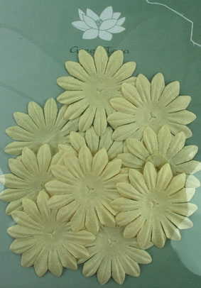 5cm Petals, Cream Pack of 10
