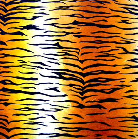 Animal Print - Tiger, Yellow.