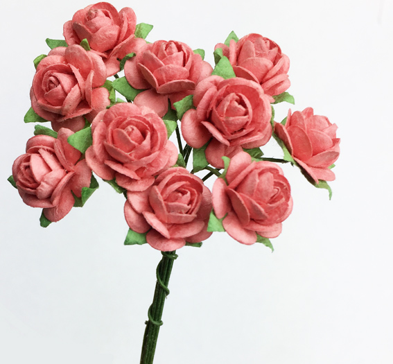 **NEW** 100 Roses 1.5cm Coral