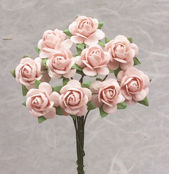**NEW** 100 Roses 1.5cm Very Pale Pink