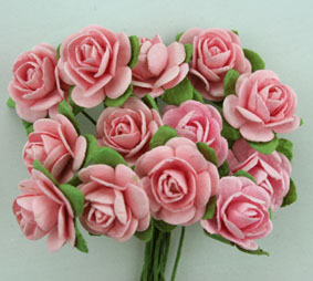 100 Roses 2cm Pale Pink