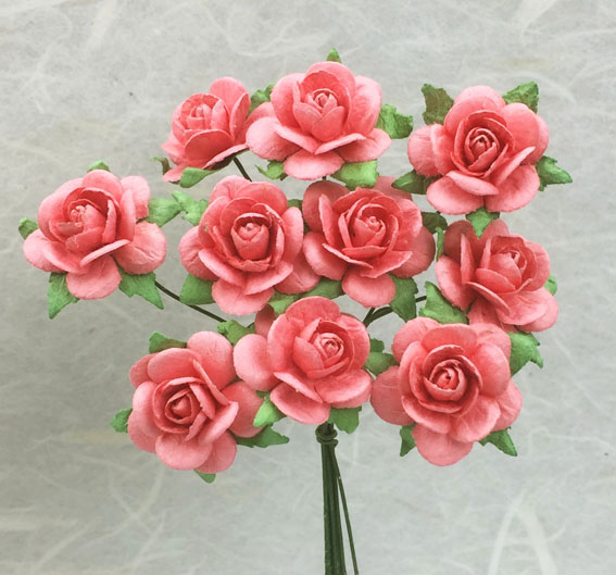 **NEW** 100 Roses 2cm Coral