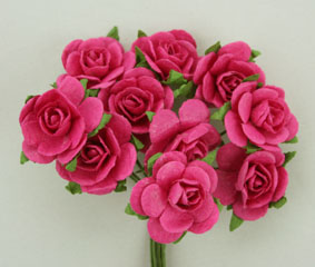 100 Roses 2cm Hot Pink
