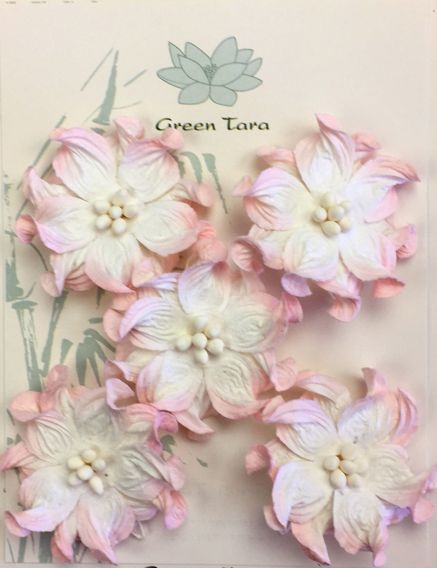 5  Pink/White Apple Blossoms