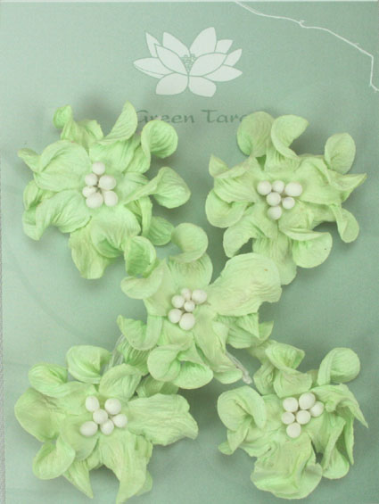 Pack of 5 Mint Apple Blossoms