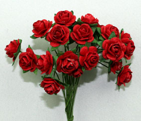 100 Roses 1cm Red