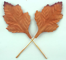 100 Oak Leaves 5cm Copper