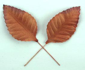 100 Paper Leaves 5cm. Copper