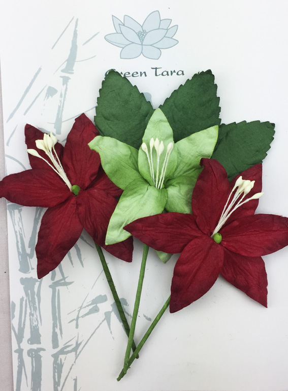 Lily Pack Red Green