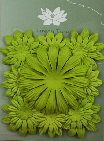 Pack of 22 mixed petals, Lime Green