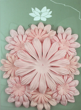 Pack of 22 mixed petals, Pale Pink