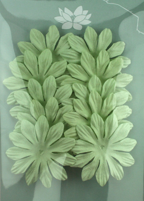 6cm Petals, Mint Pack of 10