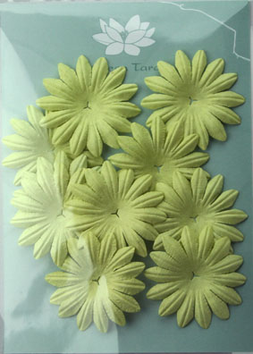 5cm Petals, Pale Green Pack of 10