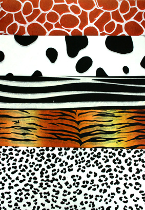 12 x 12 Assorted Animal Prints