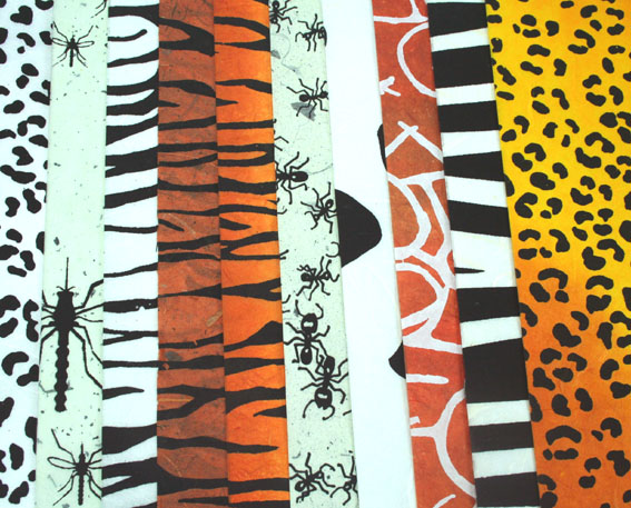 50 Animal Prints, Assorted