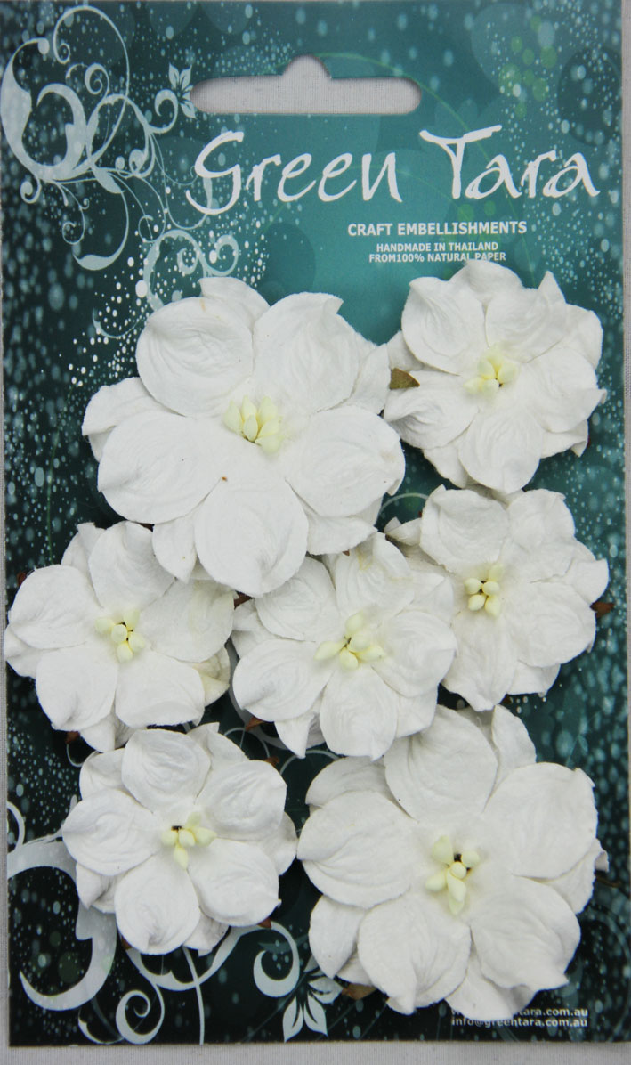 Pack 7 Boxwood Blossoms, White