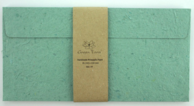 DL Envelope Pineapple Paper Aqua