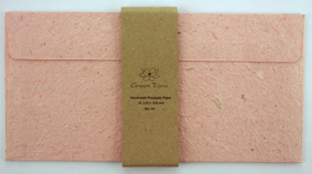 DL Envelope Pineapple Paper Salmon