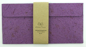 DL Envelope Pineapple Paper Violet