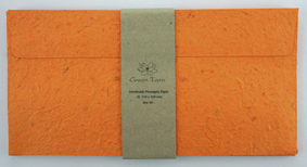 DL Envelope Pineapple Paper Tangerine