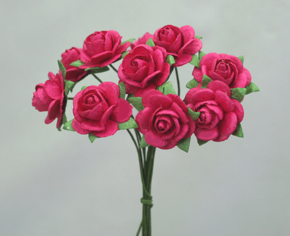 100 Roses 1.5cm Hot Pink