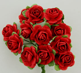 100 Roses 2cm Red