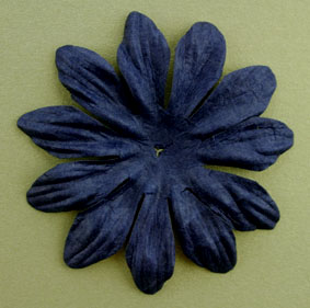 7cm petals, Midnight Blue