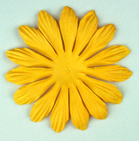 10cm petals. Daffodil Yellow Pack of 25.