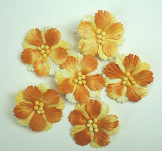 Pack of 100 Hibiscus Flowers, Ochre 2