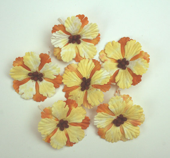 Pack of 100 Hibiscus Flowers, Ochre 3
