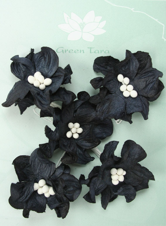 Pack of 5 Black Apple Blossoms