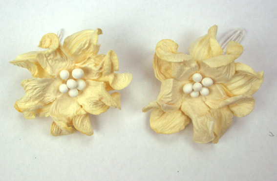 100 Ivory Apple Blossoms