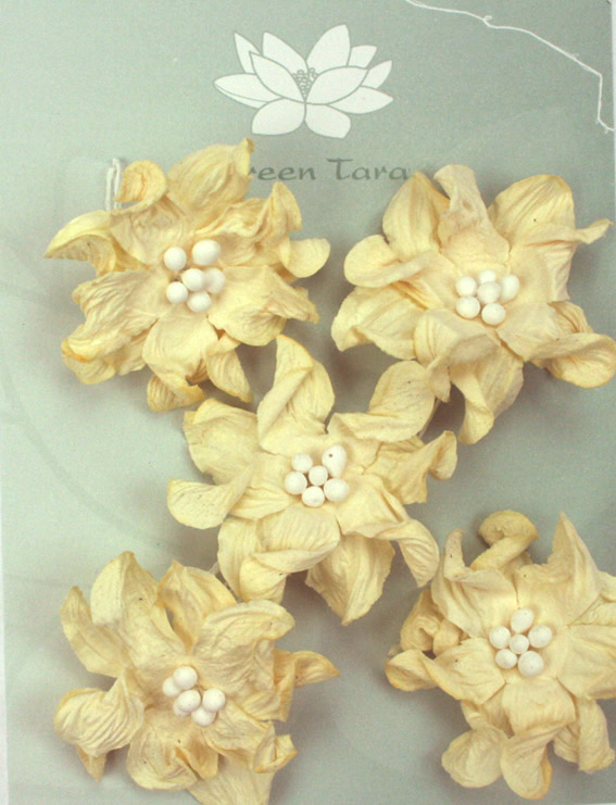Pack of 5 Apple Blossoms, Ivory