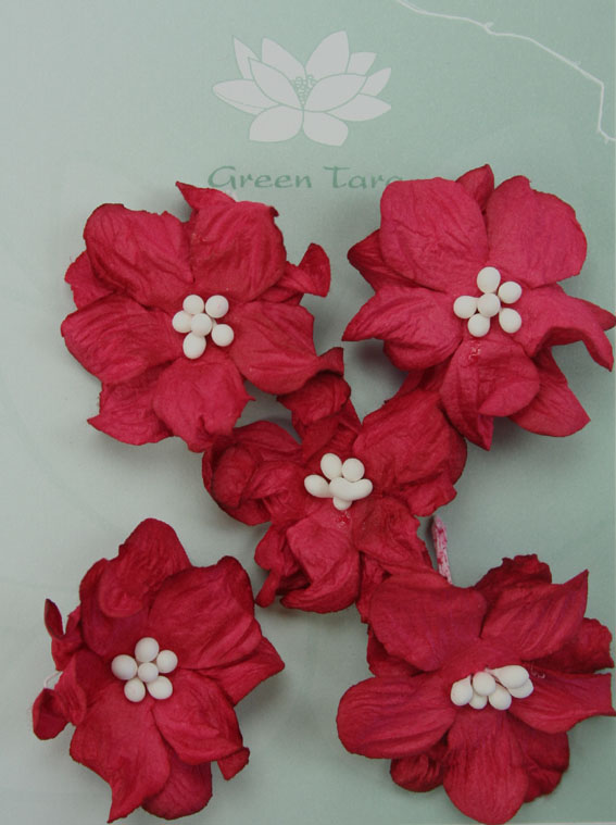 Pack of 5 Apple Blossoms, Red