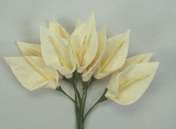 **NEW**  100 3cm Calla Lillies Ivory with Pale Yellow Stamen