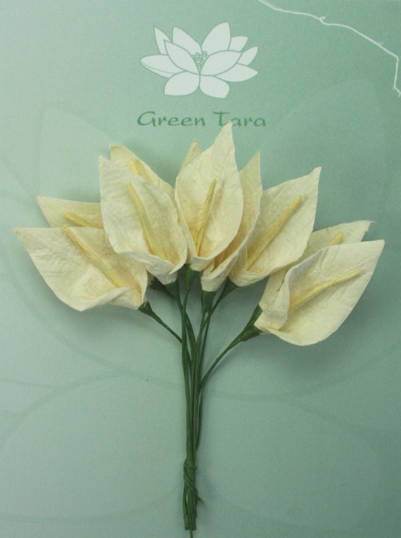 **NEW**  10 3cm Calla Lillies Ivory with Pale Yellow Stamen