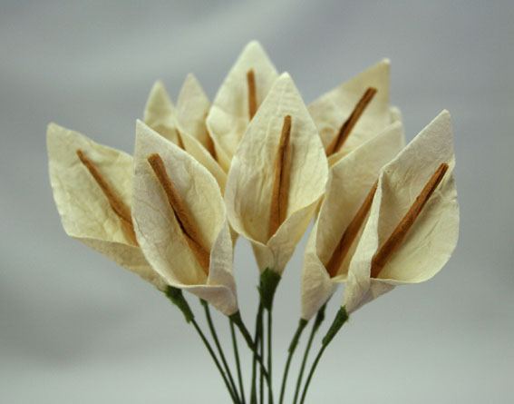 **NEW**  100 3cm Calla Lillies Ivory with Brown Stamen