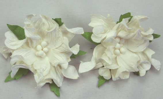 50 3 Layer Gardenia White