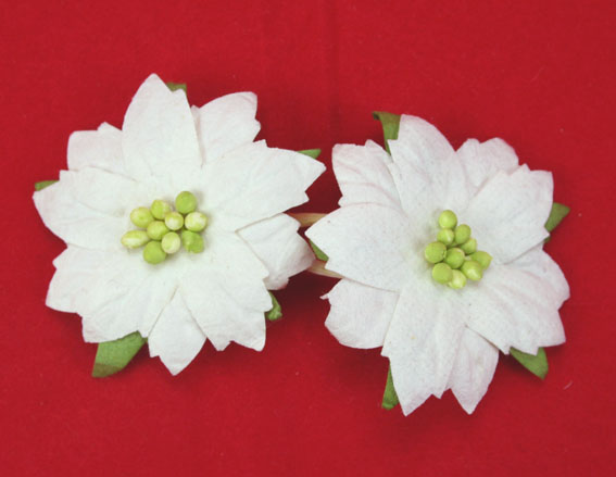 100 Mediium White Poinsettias 4cm Green Centres