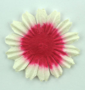 4cm Petal, Red / White