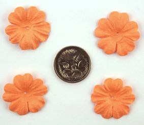 100 Petals 2.5cm Pale Orange