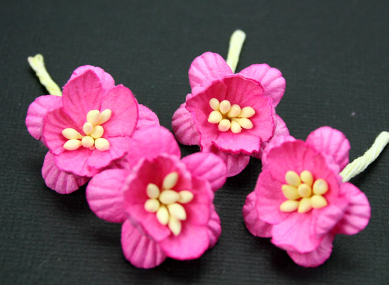 100 Cherry Blossoms 3cm Pink
