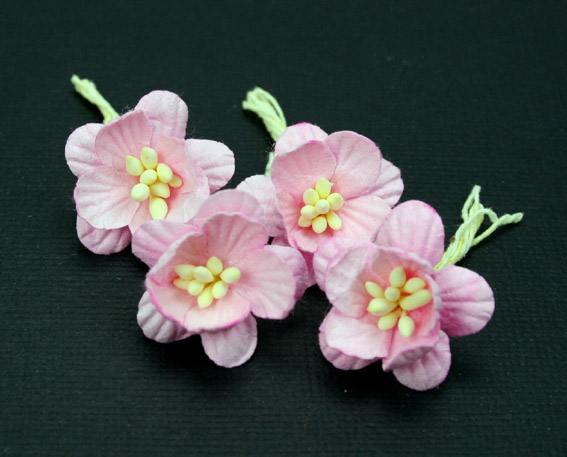 100 Cherry Blossoms 3cm Pale Pink