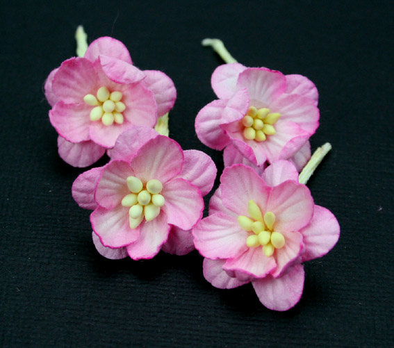 100 Cherry Blossoms 3cm 2 Tone Pink