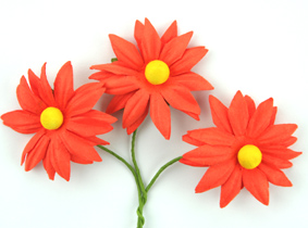 100 Orange Flowers (Chrysanthemums)