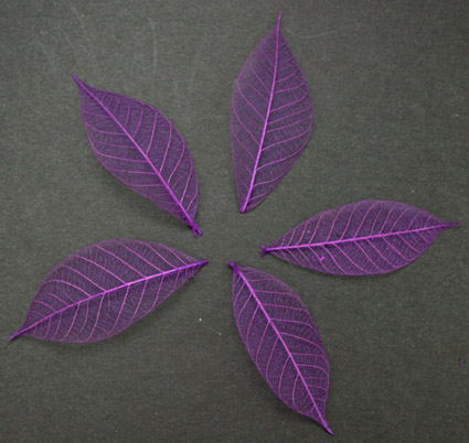 5cm Skeleton Leaves Purple Pack of 100