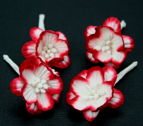 100 Cherry Blossoms 3cm Red White