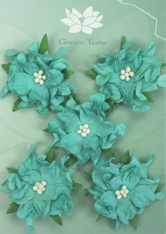 Gardenia Turquoise - Pack of 5
