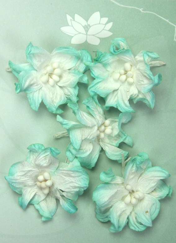 Pack of 5 Apple Blossoms, Turquoise/White