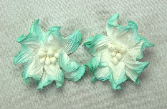 100 Turquoise/White Apple Blossoms